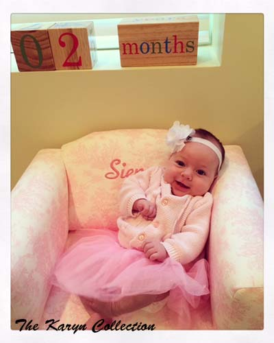 Siena's Pink Toile Chair