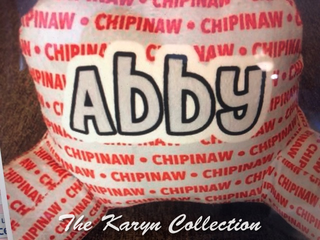 Abby's Camp Study Pillow-any camp name.... personalized